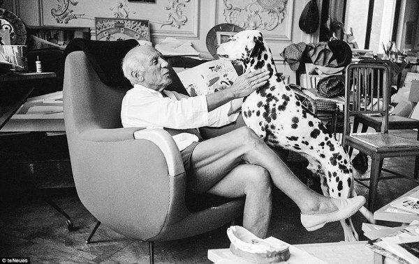 om pom picasso Black_and_white_period_Pablo_Picasso_loved_dogs_and_owned_many