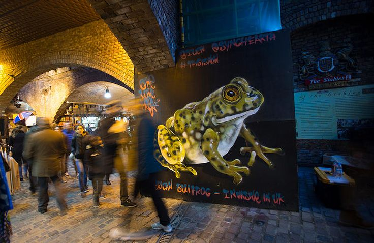 Street artist Louis Masai paints the American Bullfrog in Camden, London 17.11.14 as part of a campaign by the IUCN and Synchronicity Earth to raise greater consciousness about human impact on UK animals