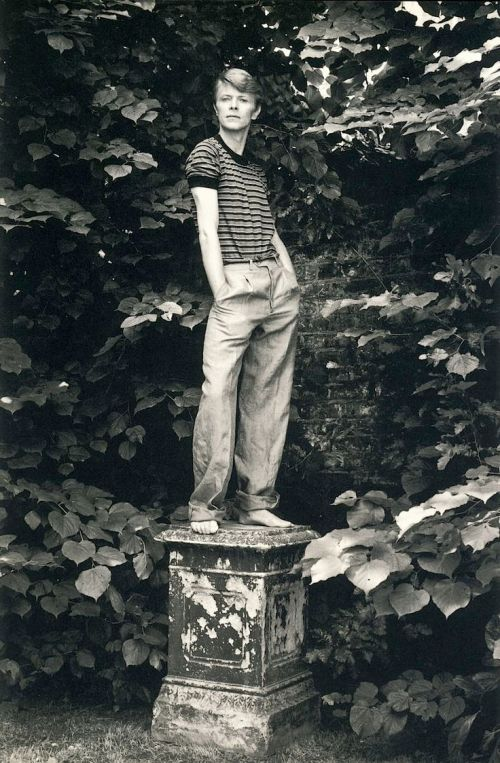 om pom david bowie 1978 photo lord snowdon
